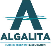 Algalita - Innovations Océans sans plastiques